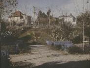 Turo Park 4 M.Genovart