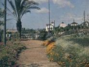 Turo Park 7 M. Genovart