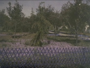 Turo park 1 M. Genovart