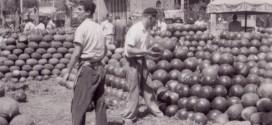 Parada de melons al Mercat del Born