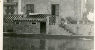 La bassa de Ca l'Alegre de Baix